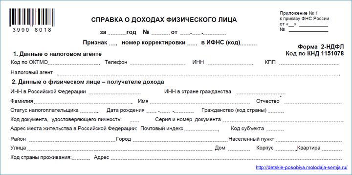 Справка о доходах физического лица (форма 2-НДФЛ)